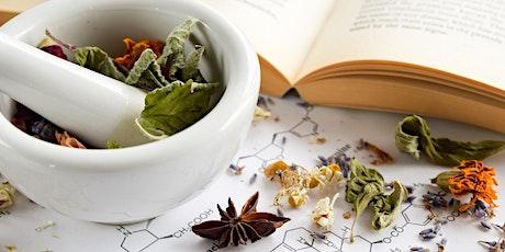Foundations of Herbalism: Herbal Botany, Plant ID, Summer Virtual Herb Walk tickets
