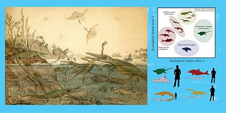 Live & Virtual - The life of the Mesozoic sea dragons tickets