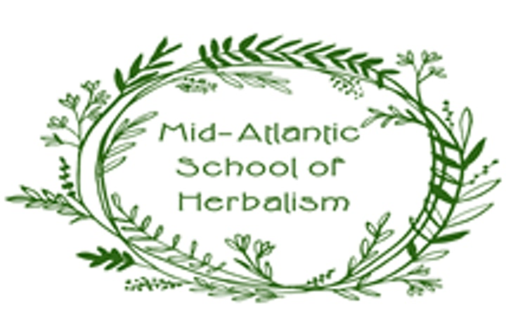 Herbal Foundations: Cardiovascular Self-Care (Saturday only) image