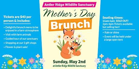 Mothers Day Brunch to benefit Antler Ridge Wildlife Sanctuary tickets