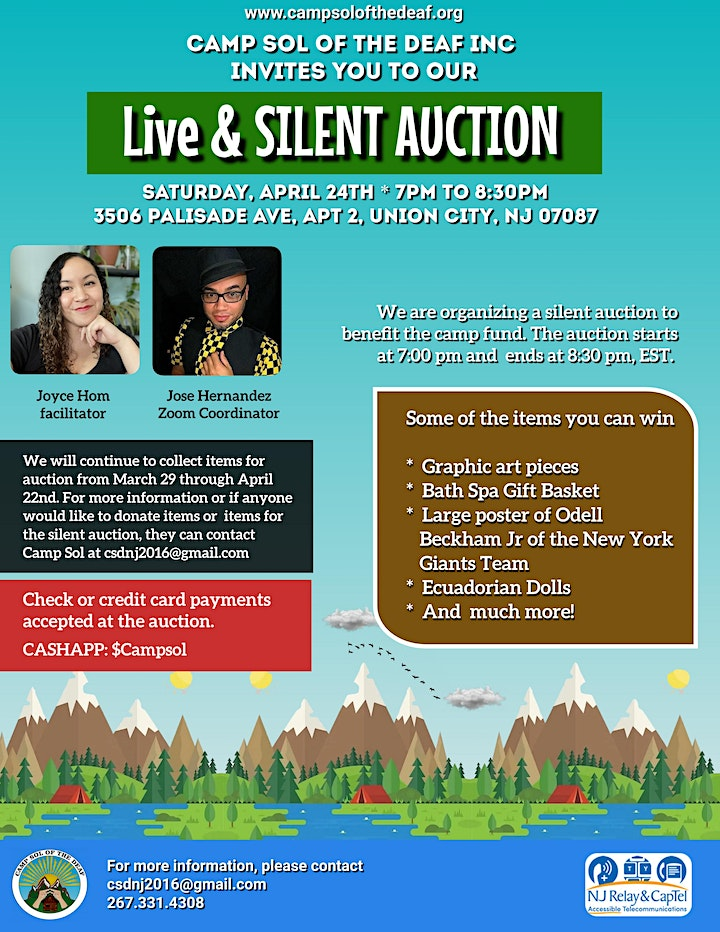 Camp Sol Live & Silent Auction image