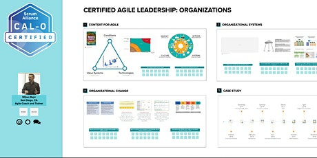 Certified Agile Leadership - Organizations tickets
