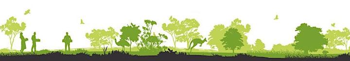 TreeProject's Shin-Dig image