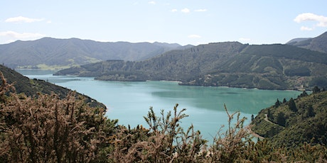 Queen Charlotte Track NZ and Other Cool NZ Trails! tickets