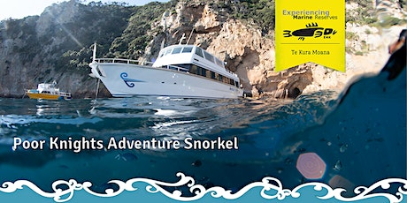 Poor Knights Adventure Snorkel tickets