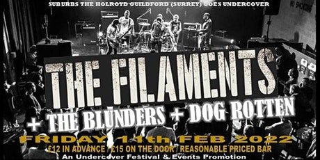 Undercover Punk + Skank down with THE FILAMENTS  +THE BLUNDERS + DOG ROTTEN tickets