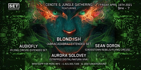 Tulum Cenote and Jungle Gathering with BLOND:ISH and more. tickets
