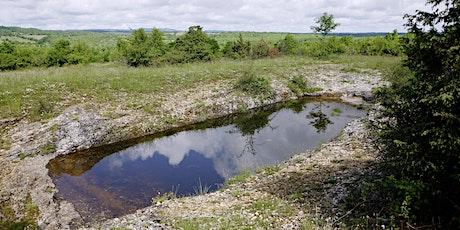 Les lacs de Saint-Namphaise, ... des points d'eau pas comme les autres ! billets