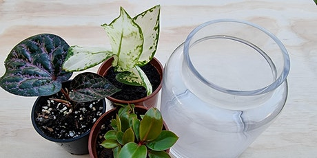Create your own terrarium - Mothers Day Gift! tickets