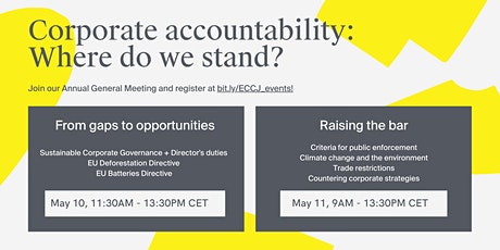 Corporate accountability: Where do we stand? Day 1 Tickets