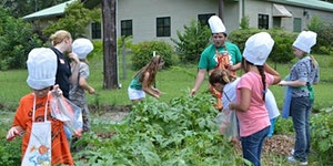 WAKULLA 4-H COOKING CAMP- A chef in the garden, a...