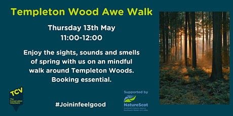 Templeton Wood Awe Walk tickets