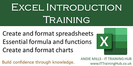 Excel Introduction |  Live-Facilitated  Online Training Course tickets
