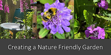 Creating a Nature Friendly Garden : Maureen Rainey, Kent Wildlife Trust tickets