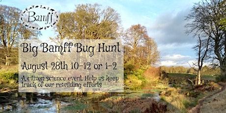 Big Bamff Bug Hunt tickets