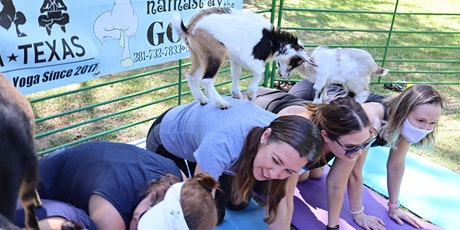 Goat Yoga Texas - MEMORIAL DAY WEEKEND - Sun, May 30 @ 10am tickets