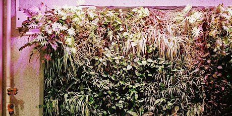 Do-it-Yourself Green Wall tickets