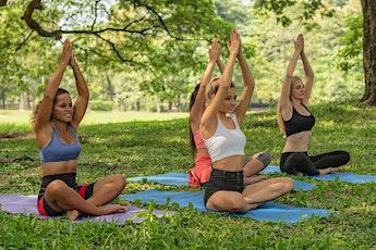 1H Vinyasa Yoga Kralingsen Bos tickets