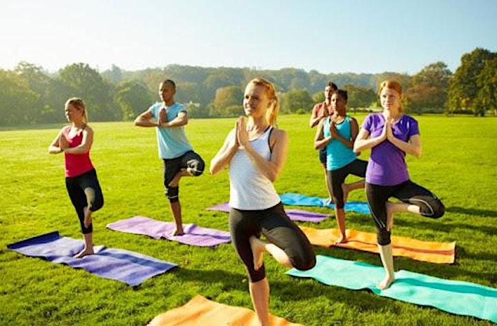 1H Vinyasa Yoga Kralingsen Bos image