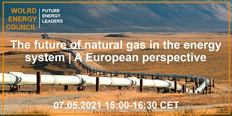 The future of natural gas in the energy system | A European perspective tickets