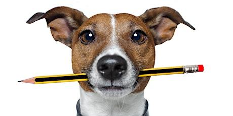 Doggie Night School Loose Lead Walking - 6 Week Course tickets
