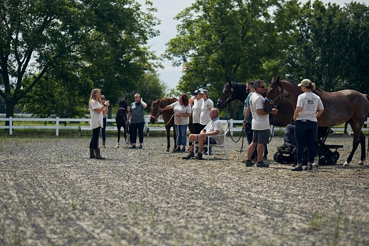 USO Experience   Trails of Purpose Equine Therapy and Horseback Riding image
