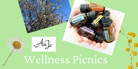 Wellness Picnic tickets