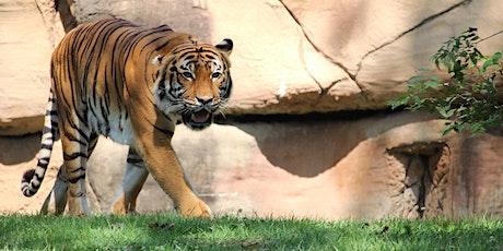 Breakfast with a Twist Series- Tigers tickets