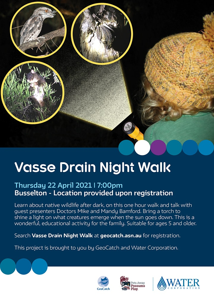 Vasse Drain Night Walk image