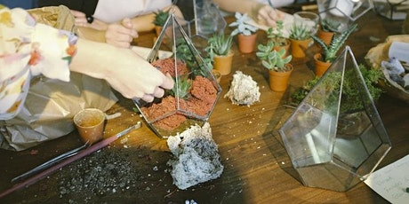 The Hills Eco Kidz -  Lets Build a Terrarium tickets