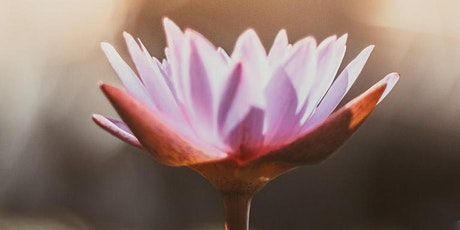[Online] Time For Healing: Creative Meditation tickets