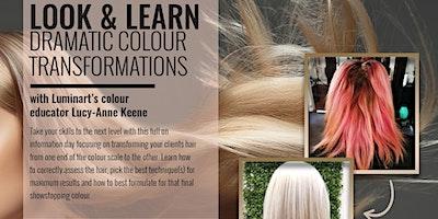 LuminArt: Look & Learn Dramatic Colour Transformations