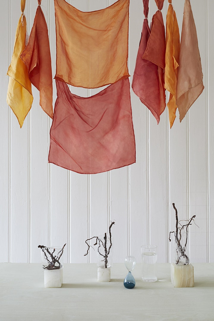 The Colour Red - with Natural Dyes image