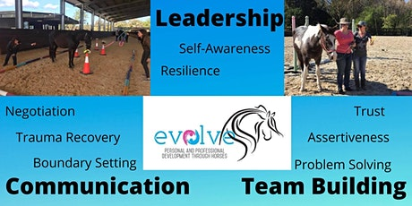 Evolve Learning and Development 1 Day Workshop (funded) tickets