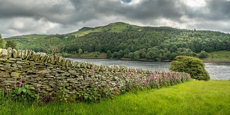 Dry Stone Walling Taster tickets
