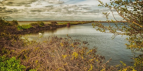 Cliffe Pools - Photography Workshop - 11th July tickets