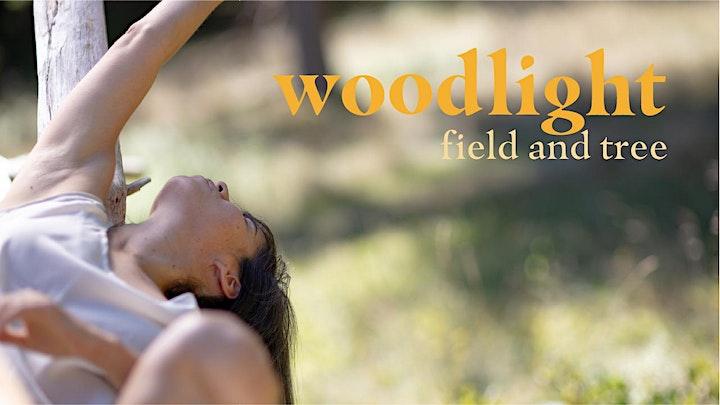 South Shore Short Shorts/ Woodlight premiere image