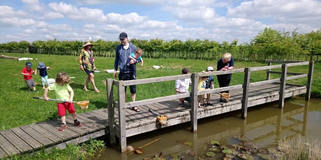 Abberton Pond Dipping tickets