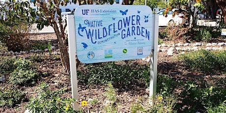 Wildflower Wanders tickets