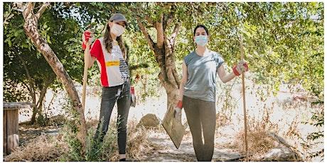 JLM: Garden renovation with at-risk teen - הקמת גינה עם נוער בסיכון tickets