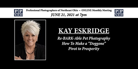 "Re-BARK-able Pet Photography  How to make a ""Doggone""  Pivot to Prosperity tickets"