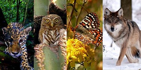 Endangered Species and Border Walls biglietti