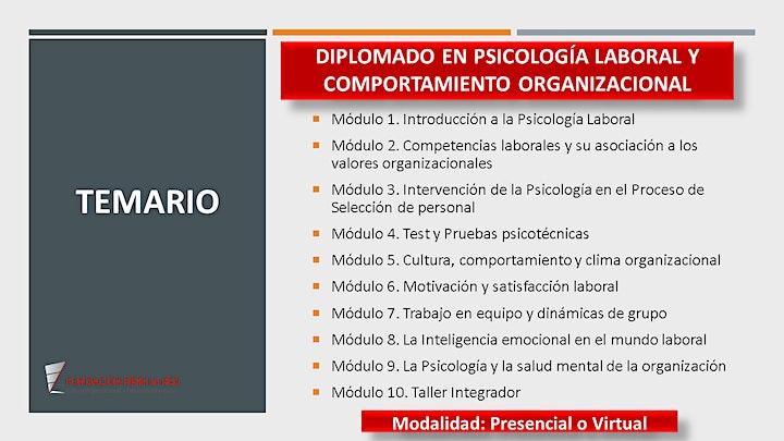 Imagen de DIPLOMADO EN PSICOLOGÍA LABORAL Y COMPORTAMIENTO ORGANIZACIONAL