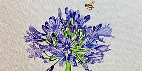 The Friday Gallery Watercolour painting live online class: Agapantha tickets