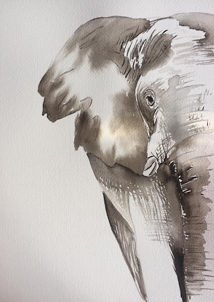 The Friday Gallery Watercolour painting live online class: Elephant image