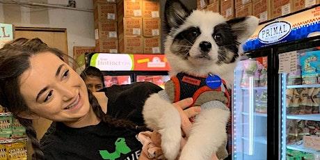 Meet The Pups!  Livestream Event, Sat 4/24 @Mika Bushwick tickets