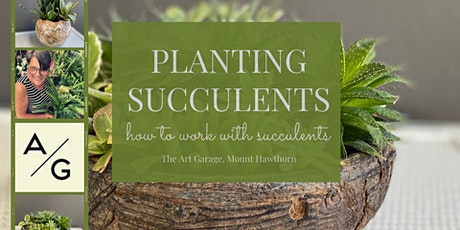 Succulent workshop: how to work with, plant and care for succulents tickets