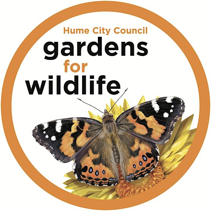 Gardens for Wildlife Workshops - Broadmeadows image