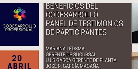 Testimonios de 4 líderes, participantes de Grupos de Codesarrollo entradas