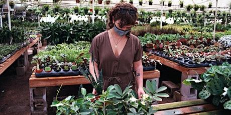 Botany 101 -  Chez Flora Houseplant Care Workshop tickets